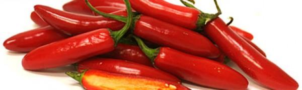 Receta fácil y sencilla Peperoncino